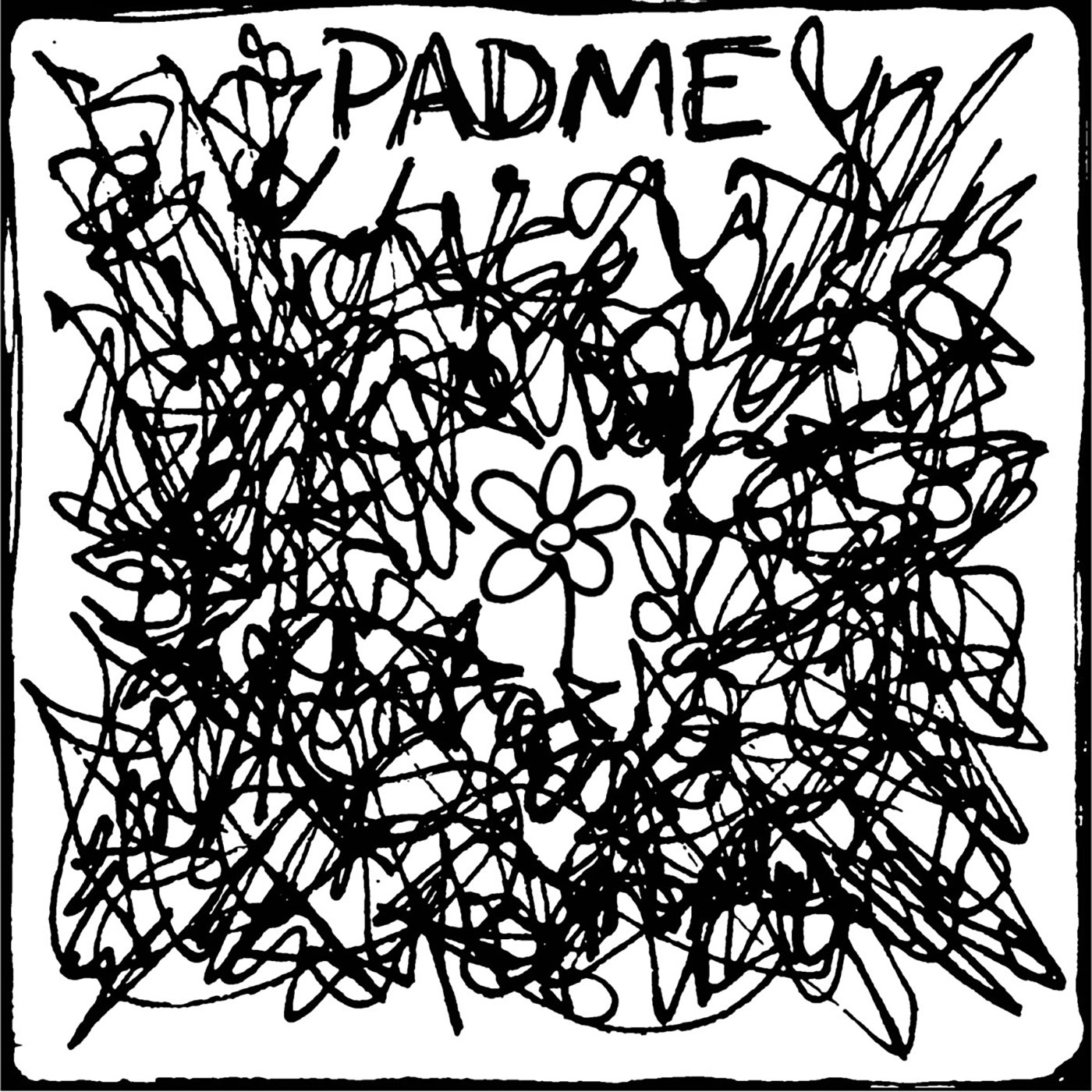 Padme – The Fine Line Between Being Conscious And Self Harm LP