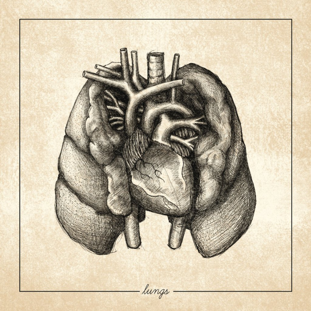 Regrowth - Lungs CD - Various Labels