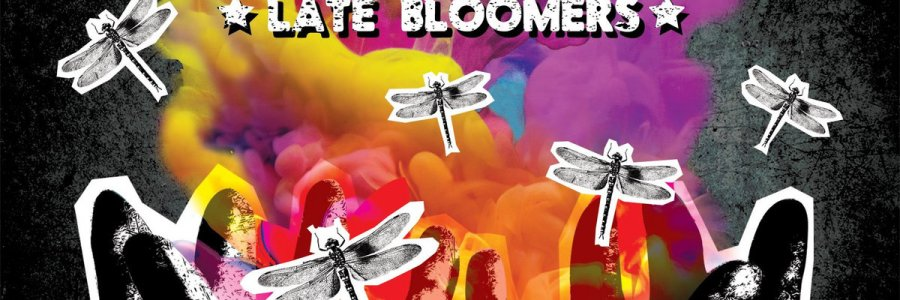 For I Am - Late Bloomers LP - Various Labels