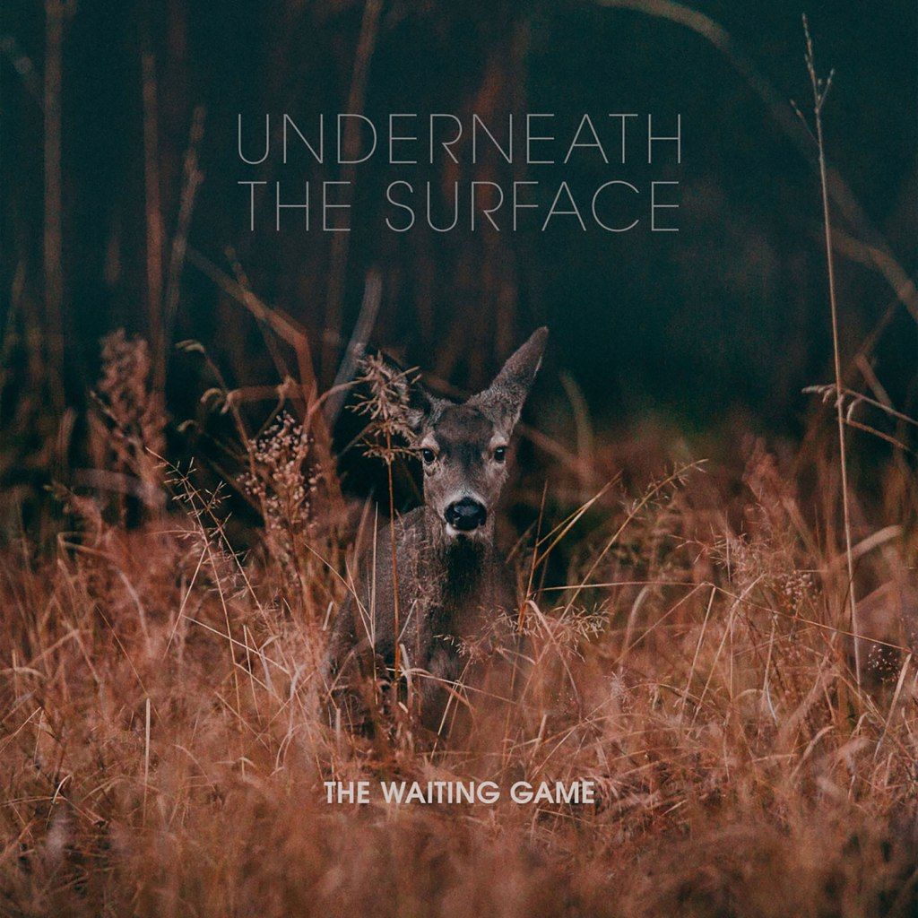 """The Waiting Game - Underneath The Surface 12"""" EP - Bearded Punk Records"""