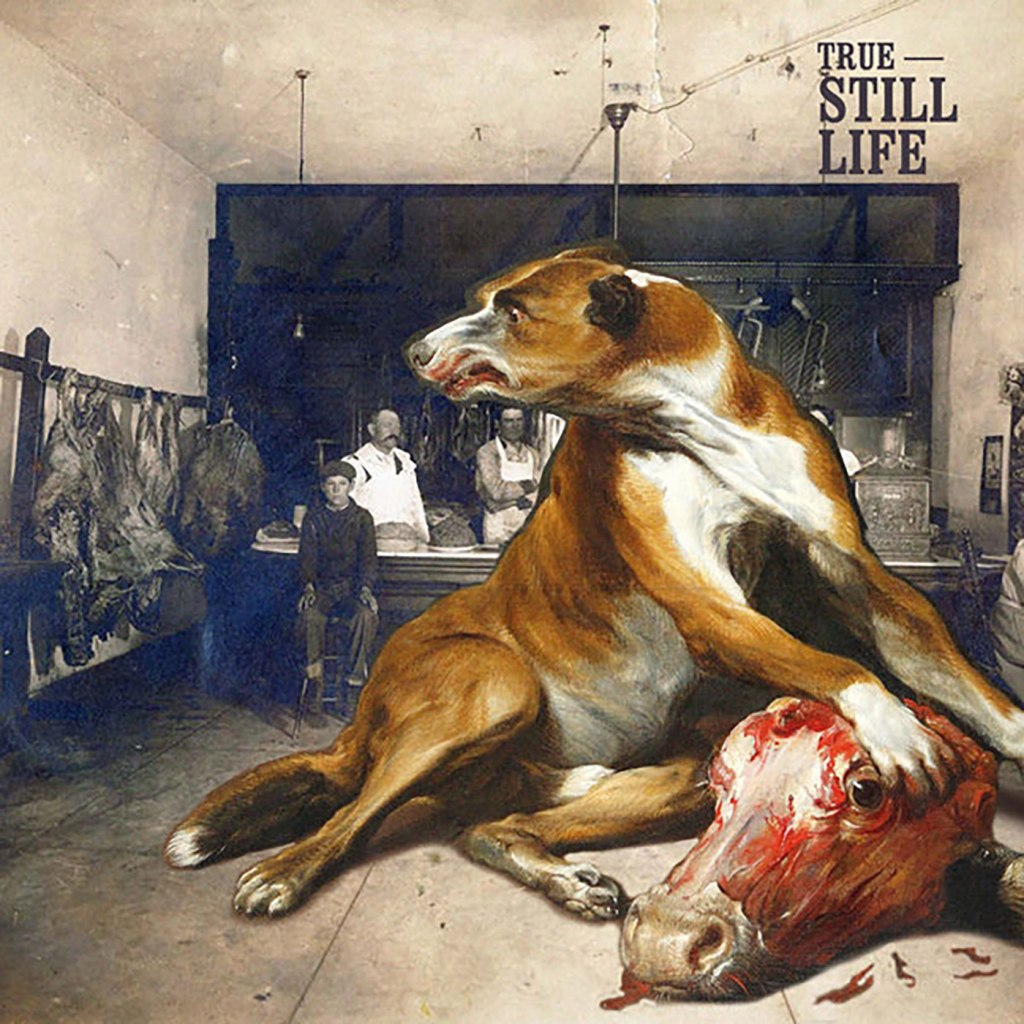 True - Still Life CD - Geenger Records