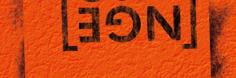 Flying Penguin - Orange CD - Hicktown Records
